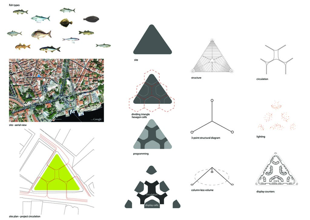 Method 3 form function remote territories for Triangle concept architecture